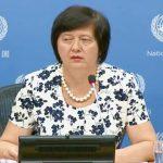 المنسقة الخاصة للأمم المتحدة تطلع مجلس الأمن على تطبيق القرار 1701